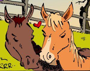 Pferde Folge 22